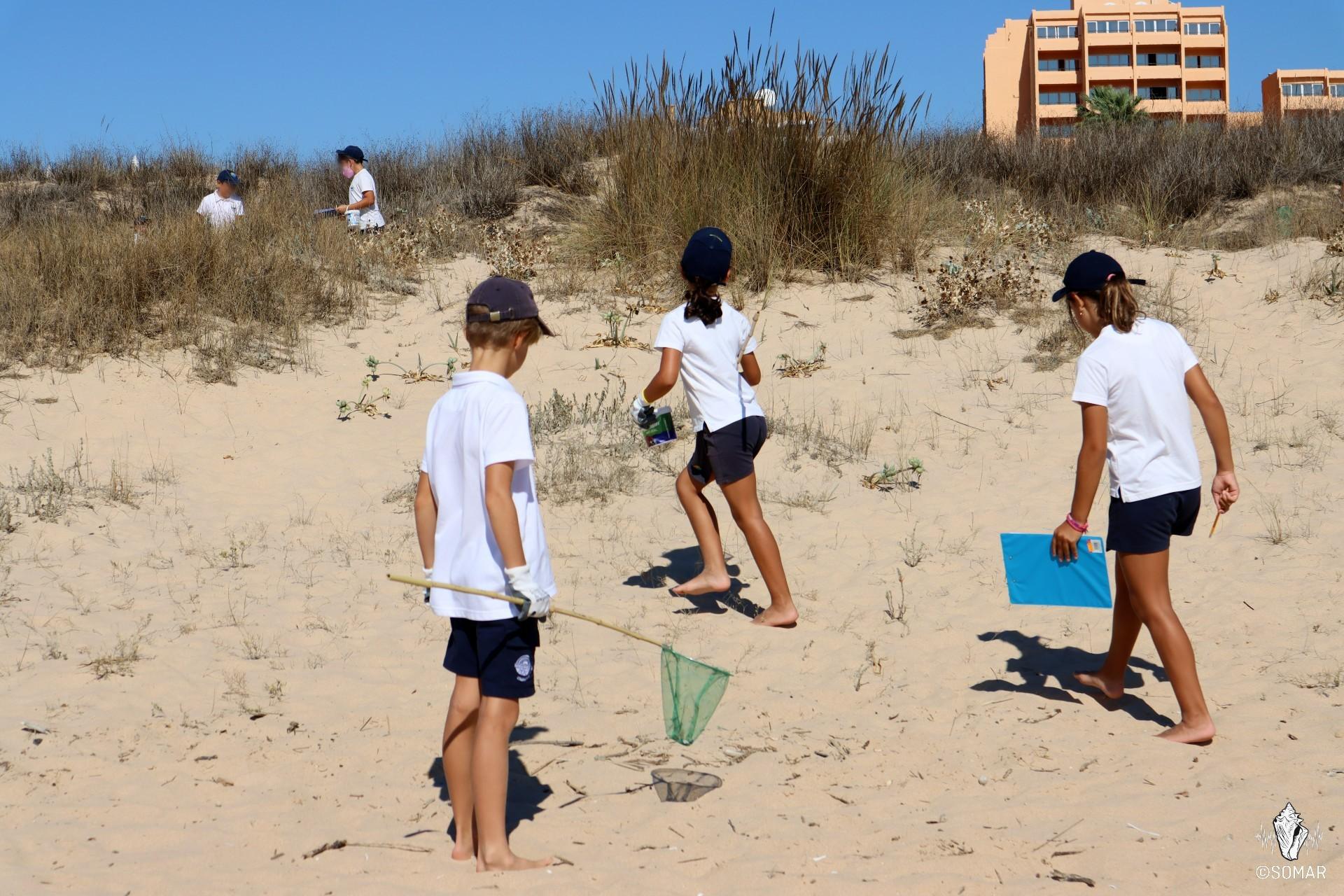 Limpeza Meia Praia - SOMAR (3)