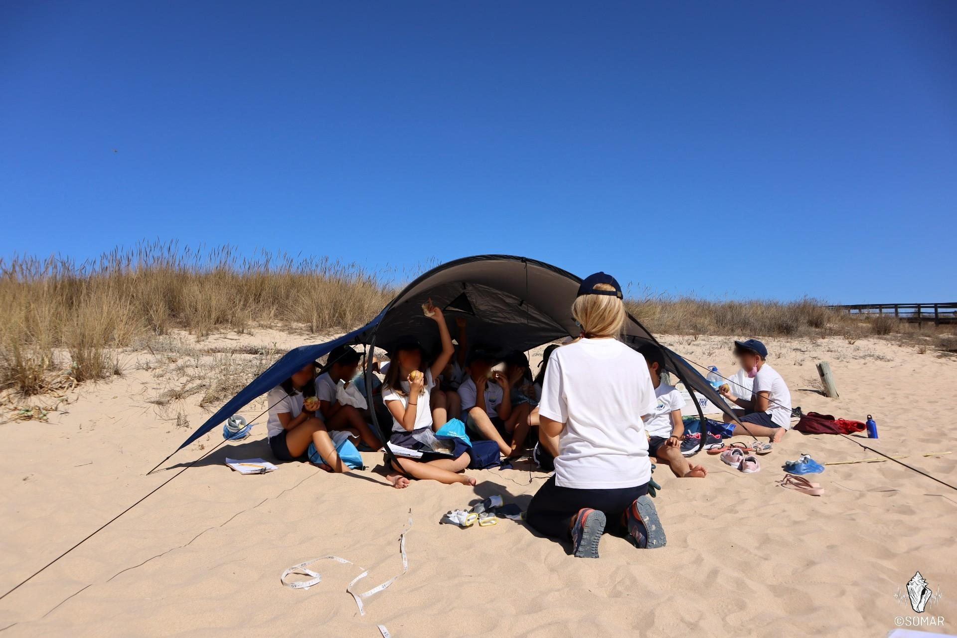 Limpeza Meia Praia - SOMAR (6)