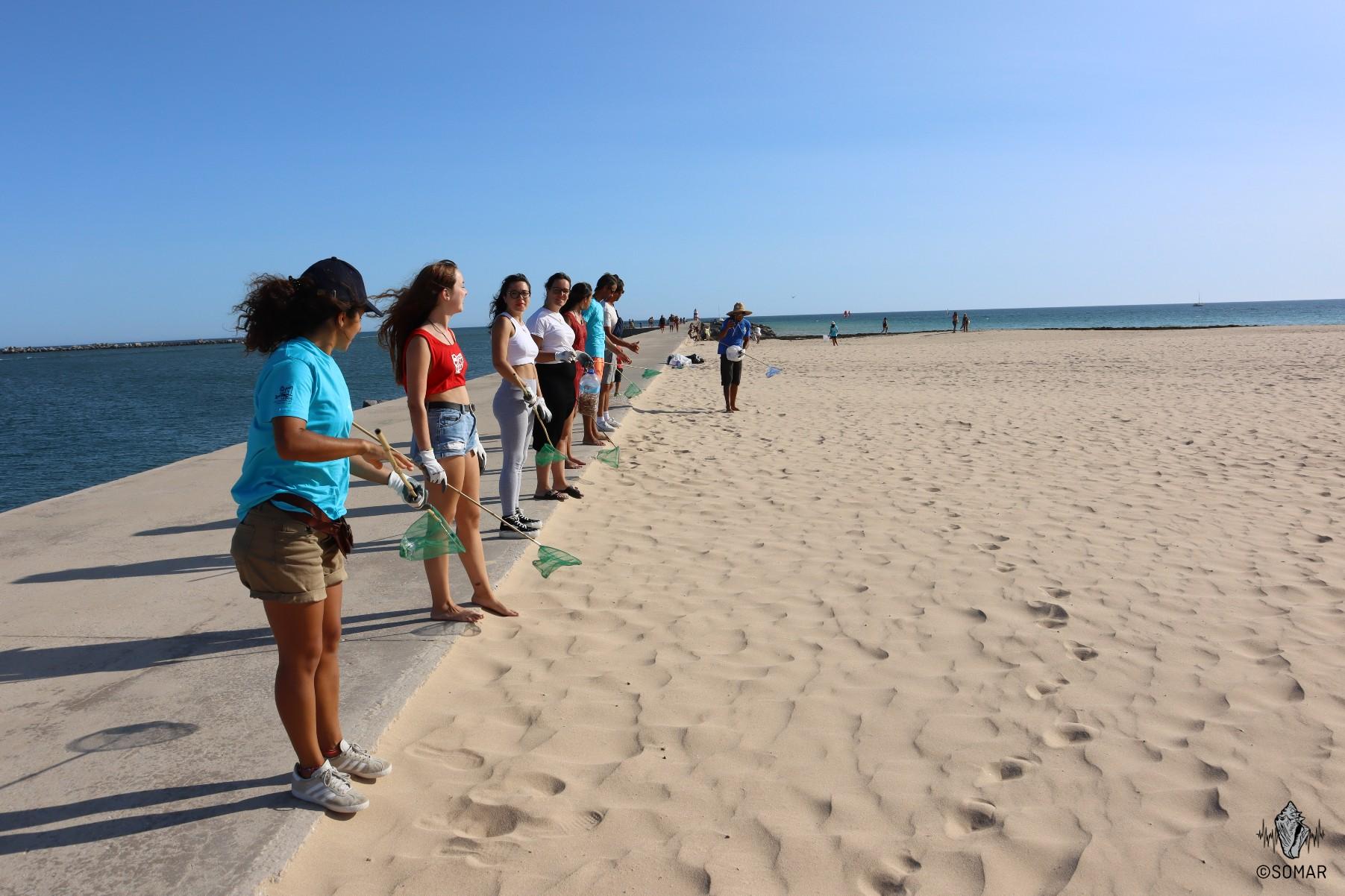 Limpeza Portimão - praia (3)