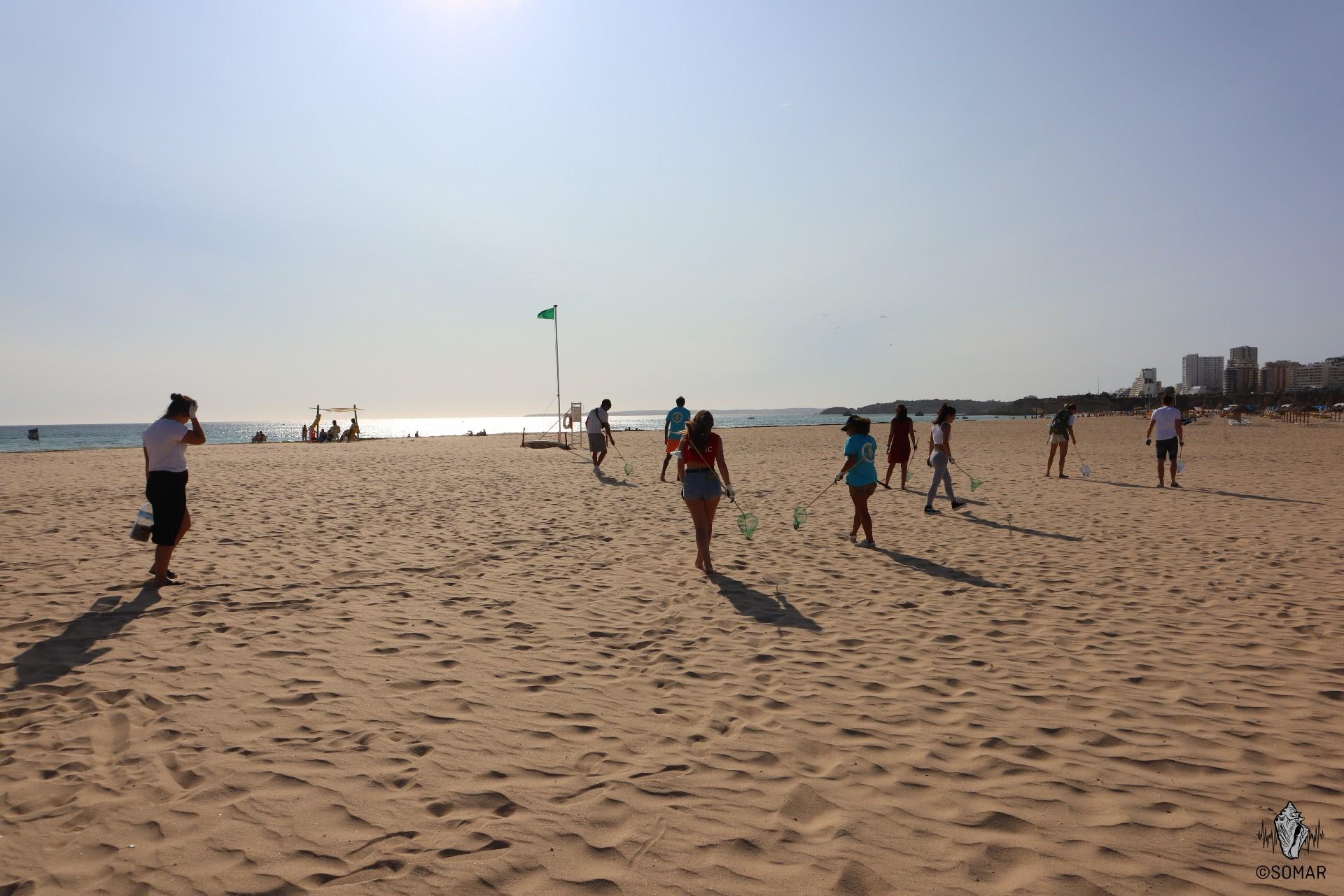 Limpeza Portimão - praia (5)