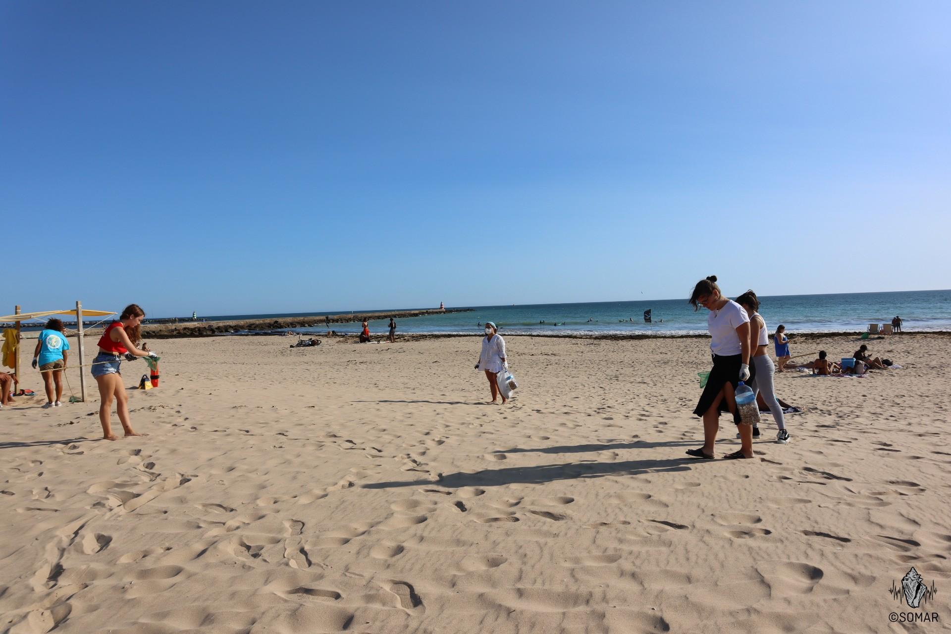 Limpeza Portimão - praia (6)