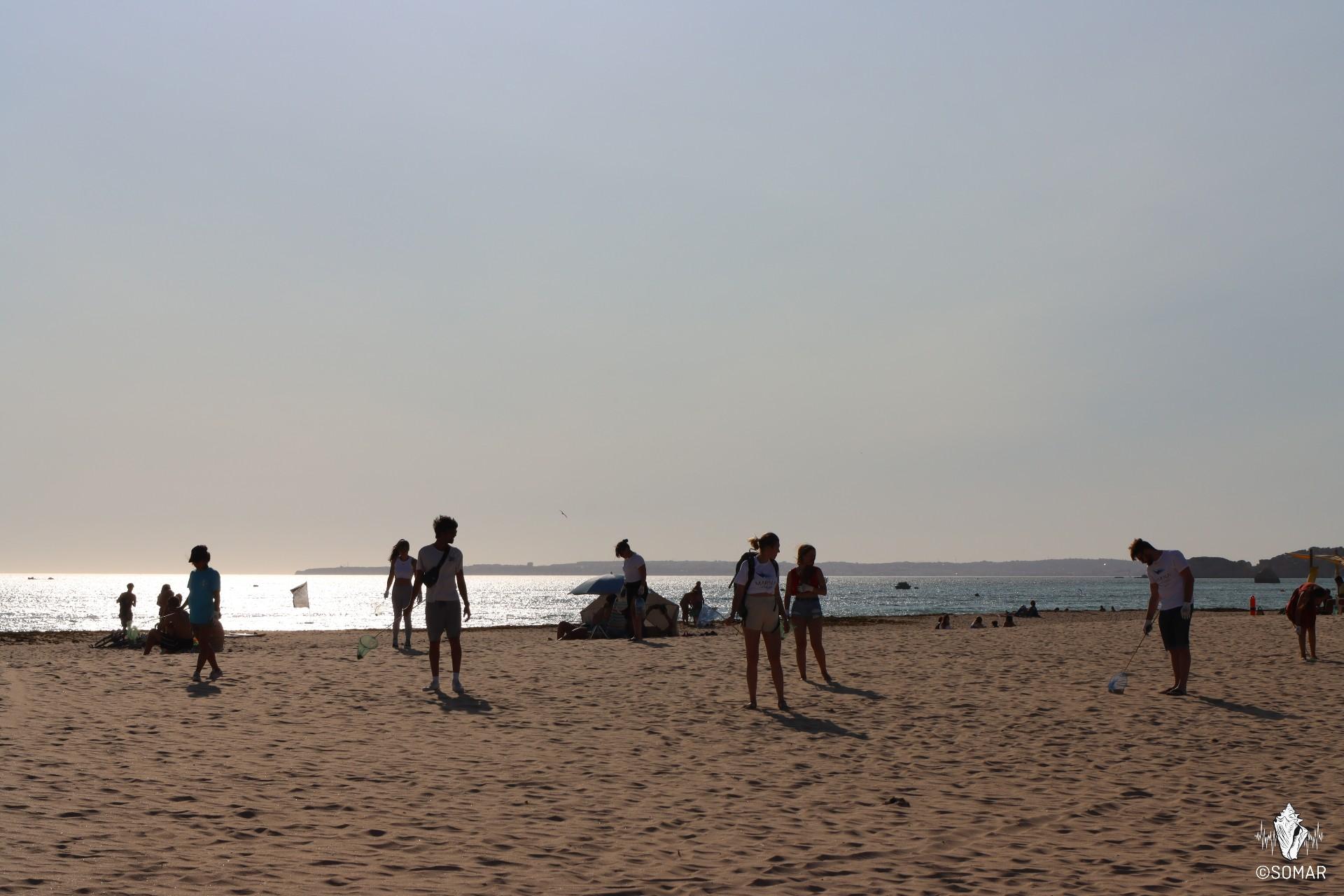 Limpeza Portimão - praia (7)