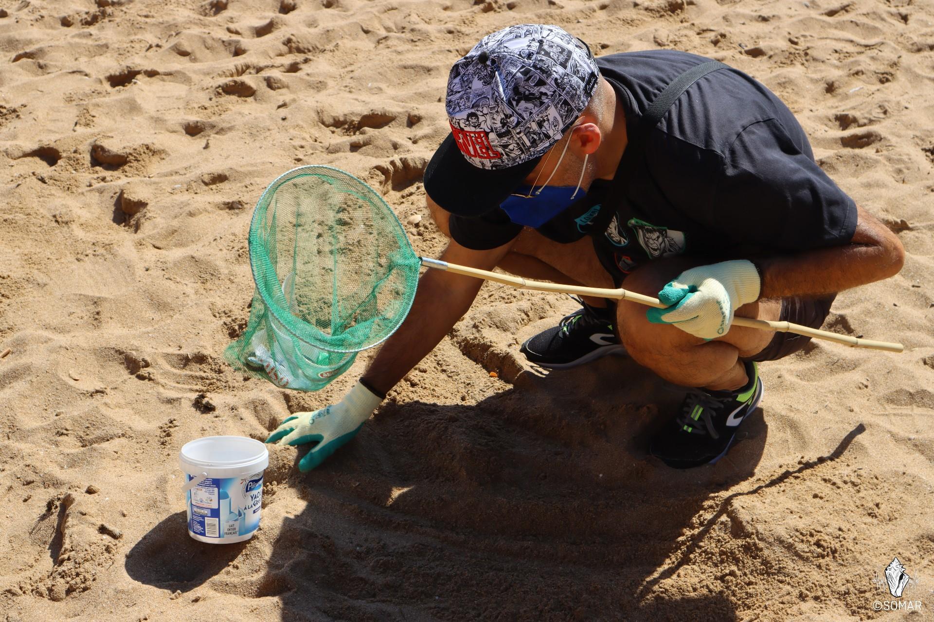 Limpeza Praia dos Estudantes (15)