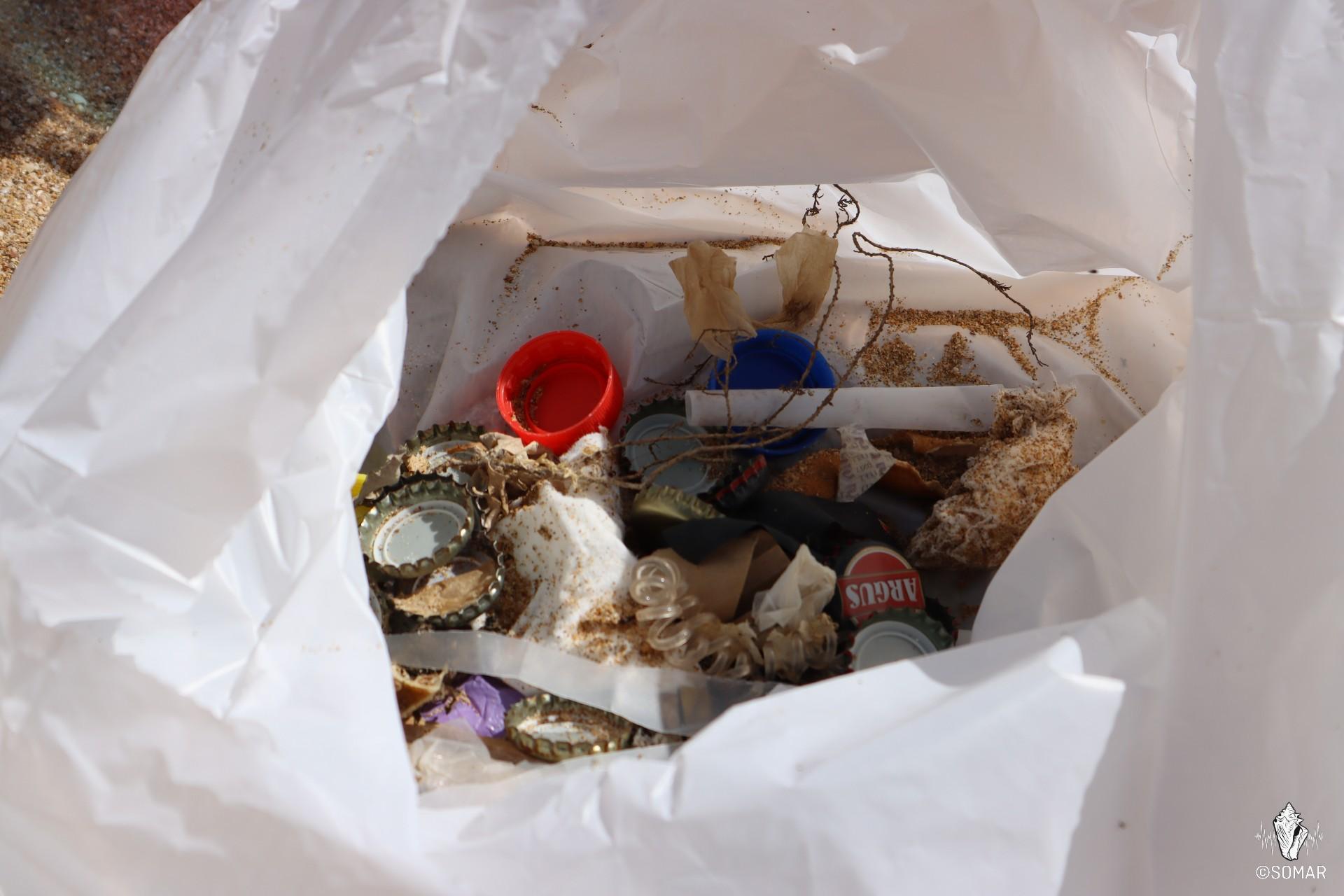 Limpeza Praia dos Estudantes (21)