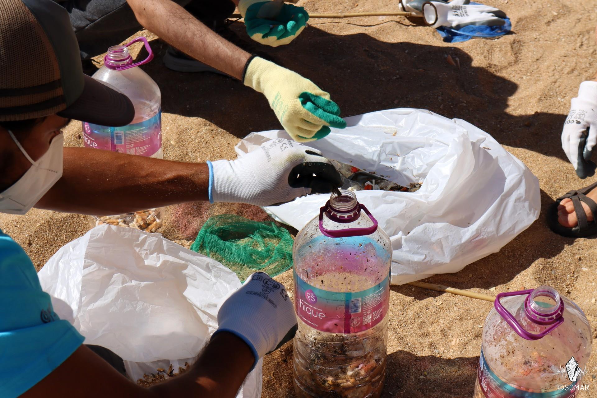 Limpeza Praia dos Estudantes (27)