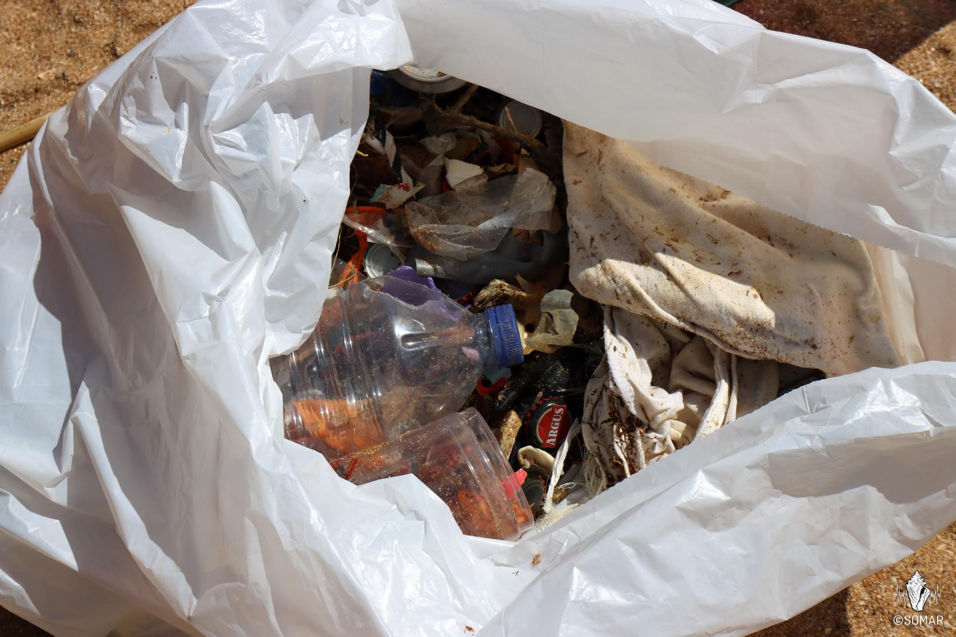 Limpeza Praia dos Estudantes (28)