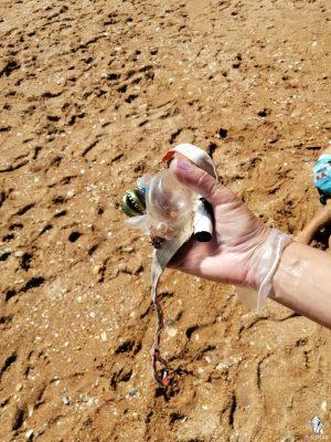 Limpeza Praia dos Estudantes (33)